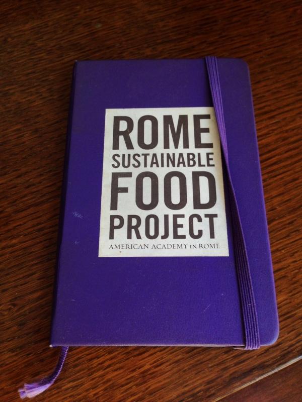 My little notebook