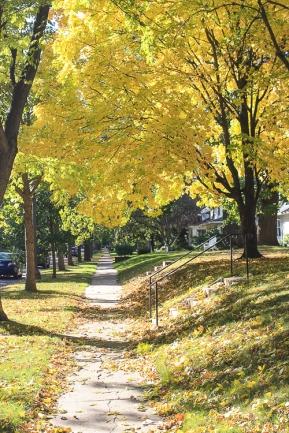Autumn in Saint Paul (8 of 9)